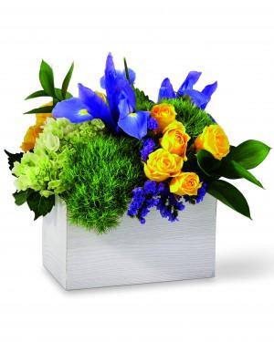 The Fields of Iris Bouquet