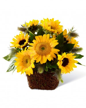 The Perfect Sun Bouquet