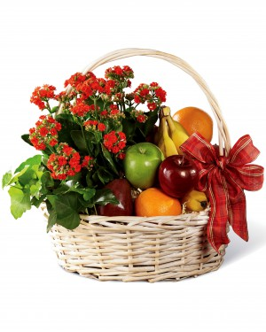 The Garden's Paradise Basket