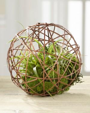 Small World Succulent Terrarium